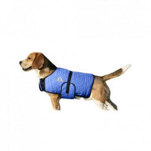 manteau rafraichissant pour chien hyperkewl