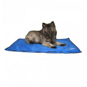 tapis-rafraichissant-pour-chien-drykewl