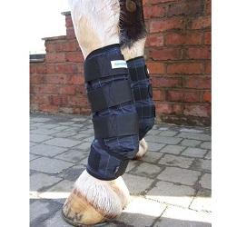 bottes rafraîchissantes pour cheval